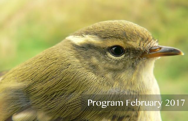 Program February 2017