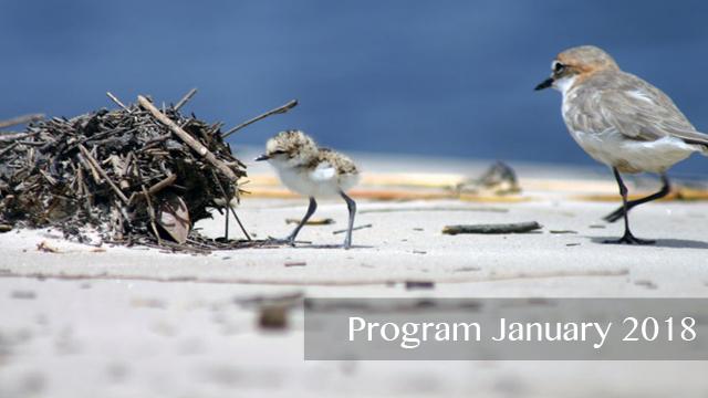 Program Reminder 2018